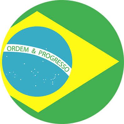 Brazilian Flag Icon