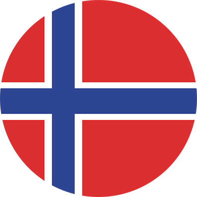 Norwegian Flag Icon