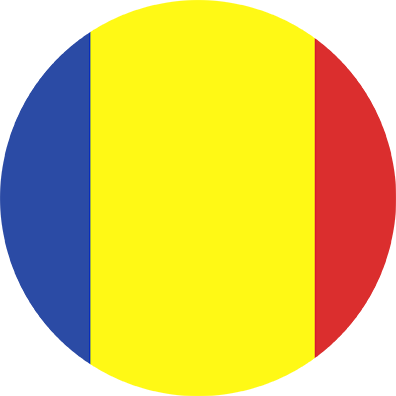 Romanian Flag Icon